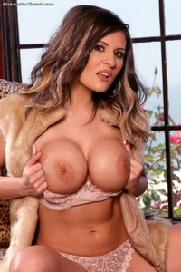 Austin Kincaid Strips Brown Lingerie 03