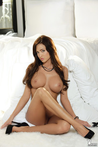 Busty Playboy Babe Sheena Stiles 09