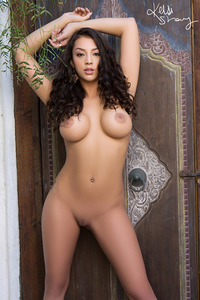 Busty Brunette Playmate Kelsi Shay 14