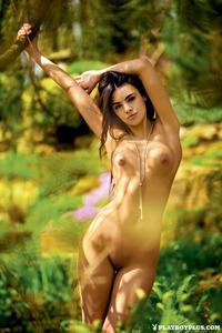 Polish Playboy Beauty Anita Sikorska 12