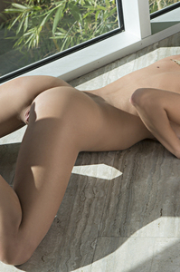 Lovely Playboy Cybergirl Anna Beletzki - Foreign Affairs 14