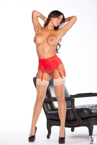Busty Playboy Cybergirl Ana Cheri Hot Nude Photos 14