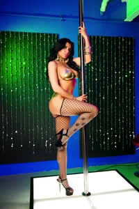 Romi Rain Pole Dancer 14