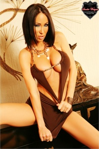 Sandee Westgate In A Sexy Brown Dress 03