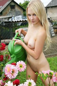Whitney On Farm